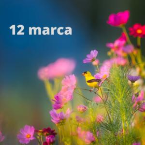obudź się na wiosnę wyzwanie